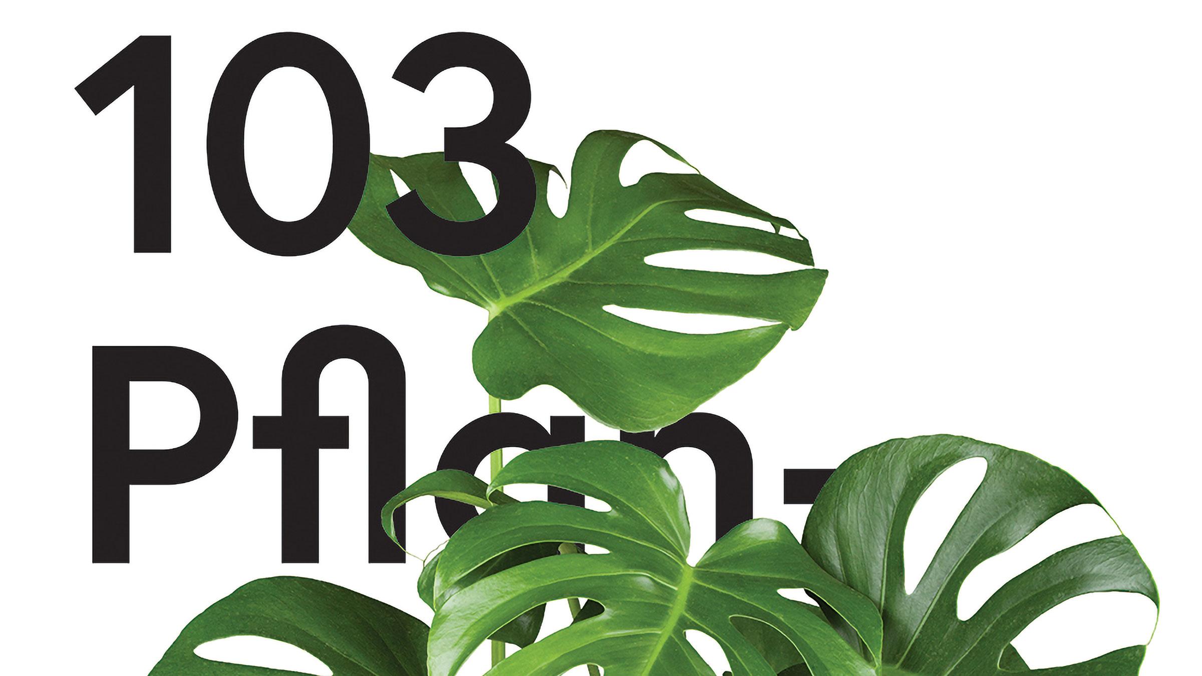 pflanze-text-2400-wo